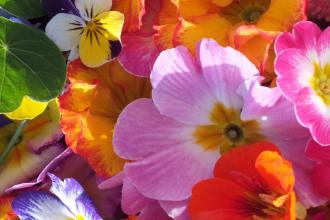 Dlaczego warto kupować kwiaty sztuczne